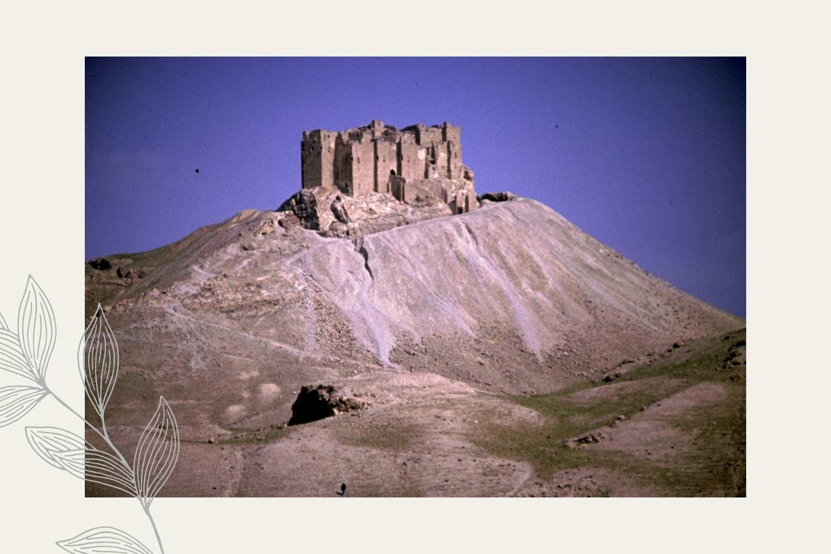 Zhenobya Alepposeife Burg von Zenobia